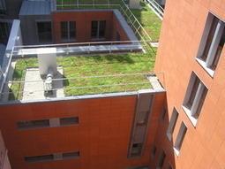 Comment végétaliser son immeuble ? | Copro en difficulté | Scoop.it