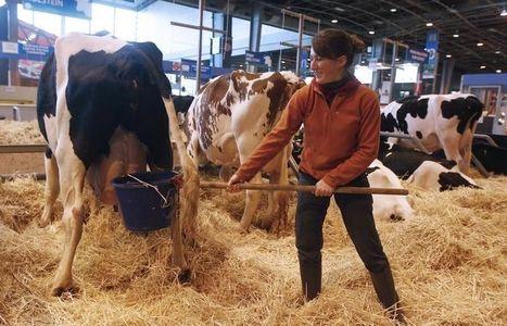 L'Allemagne sème la France même dans l'agriculture | Questions de développement ... | Scoop.it