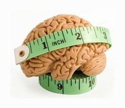 Digital multitasking förminskar din hjärna! | Människan - psykisk & fysisk hälsa, personlig utveckling | Scoop.it