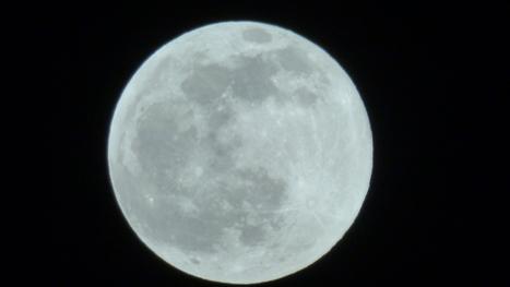 Luna de Buda   Mundo   Scoop.it