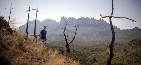 Els boscos cremats per l'incendi d'Òdena es converteixen en un gran cementiri amb 1.293 creus | #territori | Scoop.it