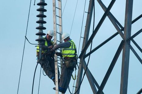 Worker killed as platform hits overhead power line  | Glazing Architecture Construction | Scoop.it