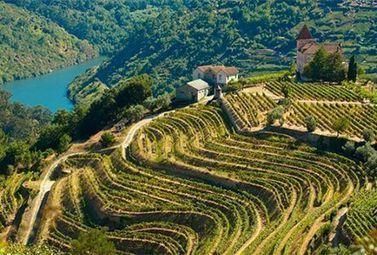 Vignobles du Monde : le Portugal - Magazine du vin - Mon Vigneron | Actualités du Vin | Scoop.it