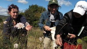Kew MSBP-BGCI Fieldwork Fund | Agricultural Biodiversity | Scoop.it