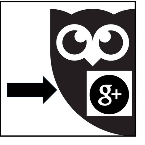 Hootsuite Adds Support for Personal GooglePlus Profiles | The Social Media Hat | SocialMoMojo Web | Scoop.it