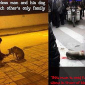 Guanghui Du: Demand justice over police killing the dog of a homeless man in Langzhong. Demand animal cruelty laws in China and stop people from committing further atrocities against the innocent a... | Nature Animals humankind | Scoop.it