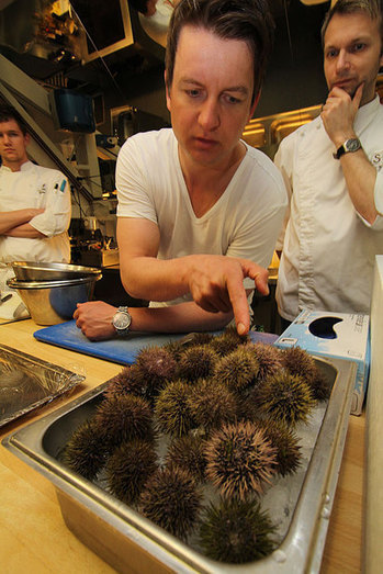 """NORWAY: """"Wow, sea urchin roe, what a taste of the coast"""" 