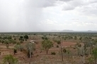 Carbon Dioxide Greening Deserts | Food & Agriculture | Scoop.it