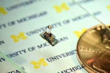 Micro Mote, un – modeste – ordinateur plus petit qu'un grain de riz | Raspberry Pi | Scoop.it
