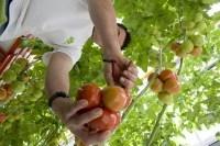 Agripicture.fr :  le photoblog du ministère de l'agriculture | Agriculture et réseaux sociaux | Scoop.it