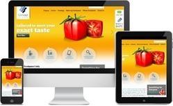 Responsive Web Design & Development India | Responsive Web Developer | Concept Infoway | Concept Infoway | Scoop.it