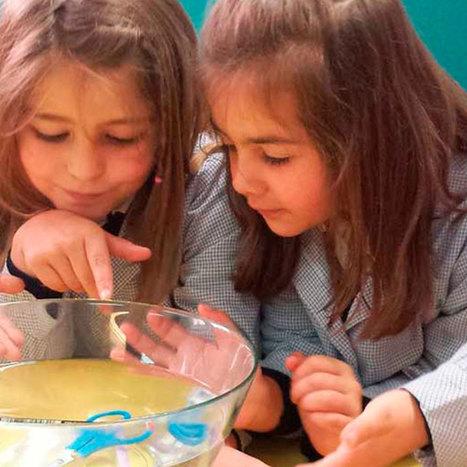 8 experimentos que los profesores ocupan para sorprender y enseñar ciencias - Elige Educar | Modelos Educativos | Scoop.it