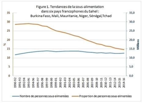 Six pays du Sahel face au défi de l'insécurité alimentaire   Questions de développement ...   Scoop.it