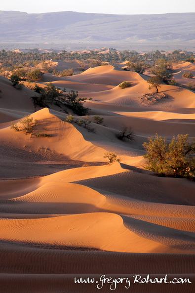 Le sud marocain : entre dunes et oasis - Maroc | Le Sahara | Scoop.it