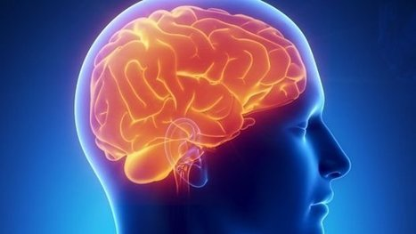 A partir de imagens do cérebro, cientistas conseguem medir a dor de uma pessoa | Science, Technology and Society | Scoop.it