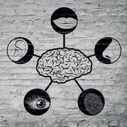 ¿Cómo funciona la mente de los profesionales de marketing? : Marketing Directo | Gabriel Catalano human being | #INperfeccion® a way to find new insight & perspectives | Scoop.it