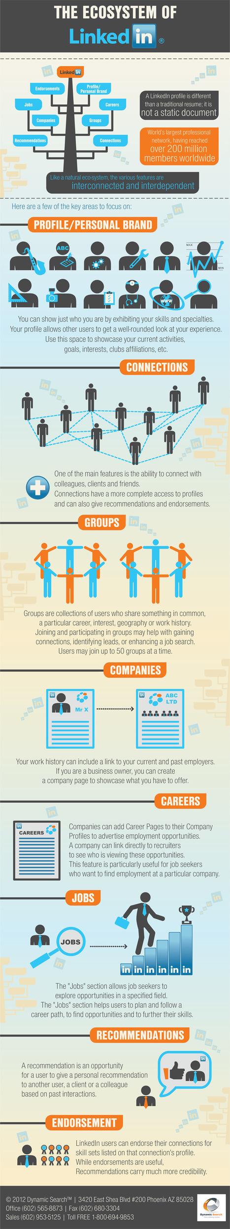 Understanding the LinkedIn Ecosystem in one minute via an infographic /@BerriePelser | WordPress Google SEO and Social Media | Scoop.it