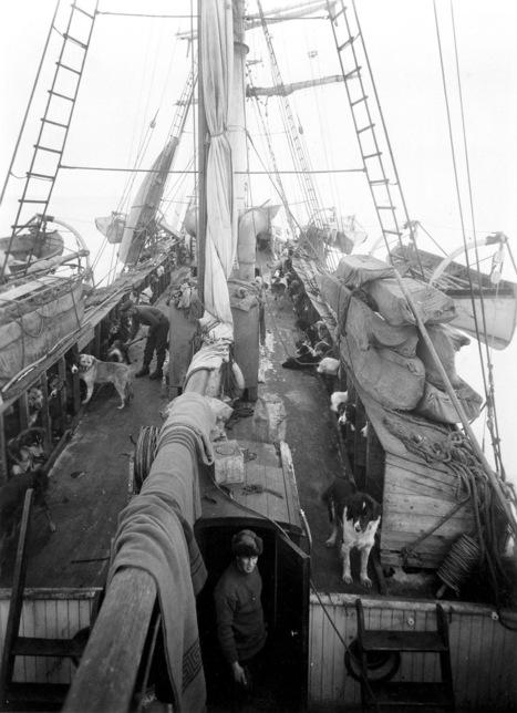 Newly Restored Photos of Shackleton's Fateful Antarctic Voyage Offer Unprecedented Details of Survival | Antarctica | Scoop.it