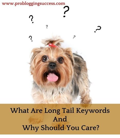 What Are Long Tail Keywords And Why Should You Care? | Seo Tips To Improve Your SEO | Scoop.it