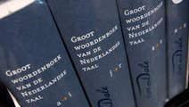 Nederlanders hebben grotere woordenschat dan Vlamingen | woordenschat en meer; theorie & achtergrond | Scoop.it
