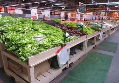 Marketing vert ou vrai circuit court paysan: dans le Nord, deux visions de l'agriculture s'affrontent | Circuits courts | Scoop.it
