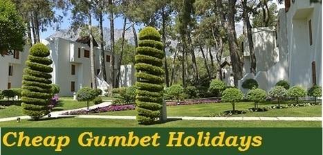 http://www.yellowturkeyholidays.co.uk/cheap-holidays-to-Gumbet-holidays-in-Gumbet-turkey.html   tejhrease   Scoop.it