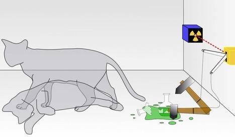 Physique quantique : le chat de Schrödinger dans deux boîtes différentes, simultanément ? | Beyond the cave wall | Scoop.it