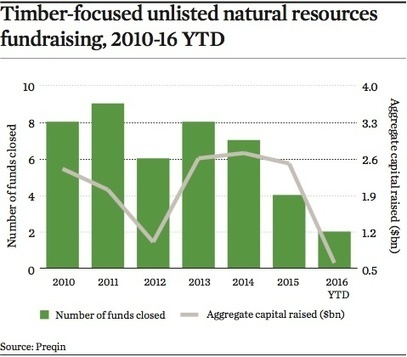 Real Assets: Timber - Returns begin to wilt | Timberland Investment | Scoop.it