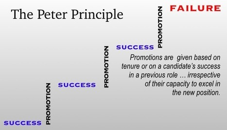 Hiring a Manager? How to Avoid the Peter Principle | Entreprise Agile et complexité | Scoop.it