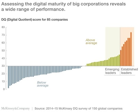 Raising your Digital Quotient- @McKinsey claims digital initiatives deliver +5-10% a year | Digital Transformation of Businesses | Scoop.it
