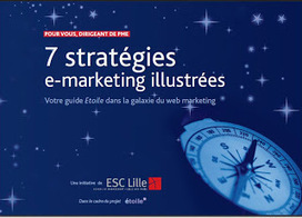 7 stratégies e-marketing illustrées | E-Marketing Box | Scoop.it