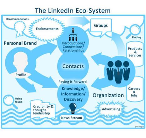Something Has Changed At LinkedIn | International Career | Scoop.it