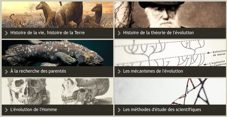 Évolution des espèces»Accueil | TICE en tous genres éducatifs | Scoop.it