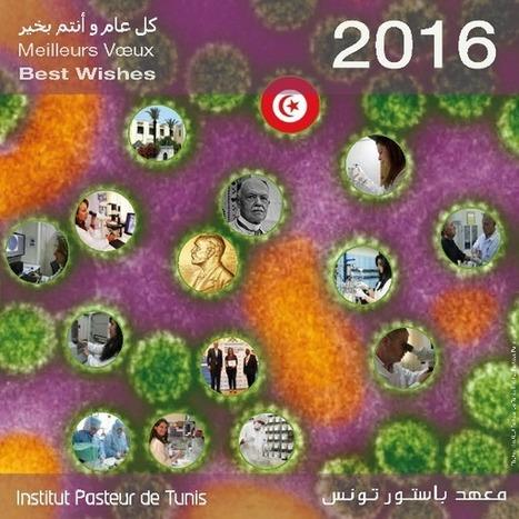 كل عام و أنتم بخير/meilleurs vœux/best wishes 2016 | Institut Pasteur de Tunis-معهد باستور تونس | Scoop.it