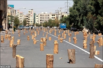 Gallery - Category: Iran - Art & Culture - Image: Treehuggers block Kerman street with blocks of wood - Tehran Times | Middle East Environmental Issues | Scoop.it