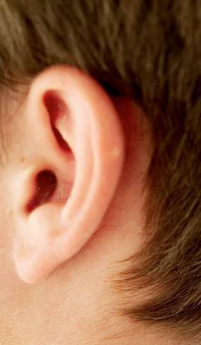 Implantable Electronic Devices Powered By The Ear Itself | shubush healthwear | Scoop.it