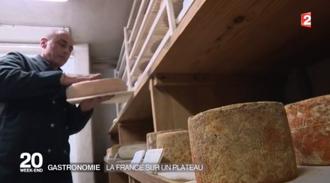 Le fromage, véritable reflet de notre histoire et de notre terroir | thevoiceofcheese | Scoop.it