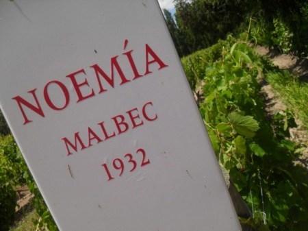 Noemia, Patagonia | South American Wines Online | Scoop.it