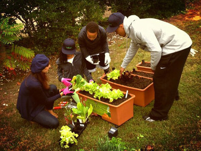 Rap-Up.com || T.I. Goes Gardening with CNN | Simply Grow Great Food | Scoop.it