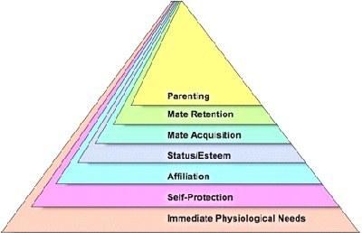 La pyramide de Maslow revisitée par la psychologie évolutionniste | Shabba's news | Scoop.it