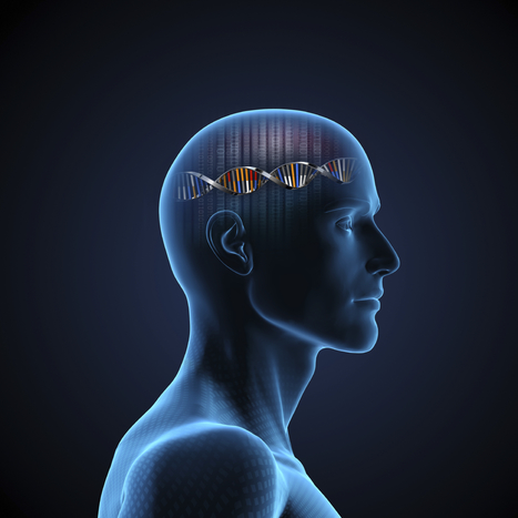 Clarifying the relationship between health and cognitive functioning | Communicating Science | Scoop.it