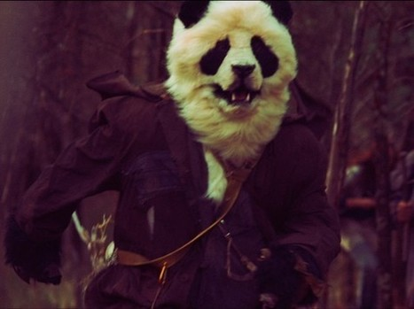 Faveoly Project of the Day: Wastelander Panda by Epic Films   Crowdfunding World   Scoop.it