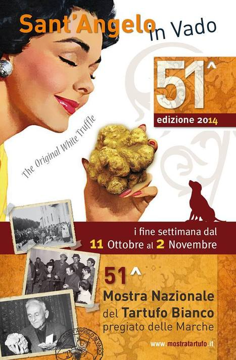 National Festival of White Precious Truffle of Le Marche in Sant'Angelo in Vado | Le Marche and Food | Scoop.it