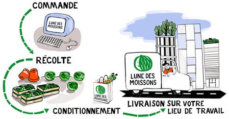 Lune des Moissons : livraison panier Paris et région parisienne | Locavore | Manger Juste & Local | Scoop.it