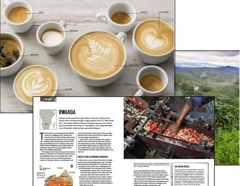 A new book : The World Atlas of Coffee coming soon ! | Coffee News | Scoop.it