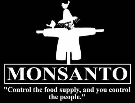 La Tribune Online - Le «Monsanto act» met les OGM au-dessus de la loi aux Etats-Unis | Abeilles, intoxications et informations | Scoop.it