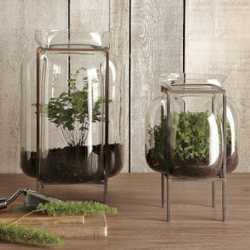 Domestic Sluttery: A Growing Trend: Pretty Planters and Terrific Terrariums   Container Gardening   Scoop.it