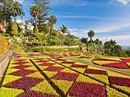 Why Madeira is the tropical garden capital of Europe  | MyLuso News | Scoop.it