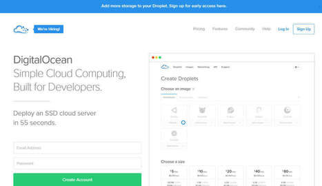 Como Configurar Wordpress na Digital Ocean com domínio próprio | Cursos Online | Scoop.it