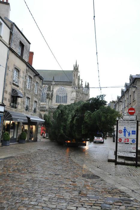 Alençon. Un géant vert en centre-ville | Le Mag ornais.fr | Scoop.it